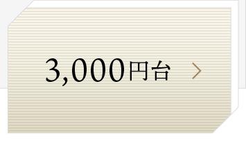 3000円台